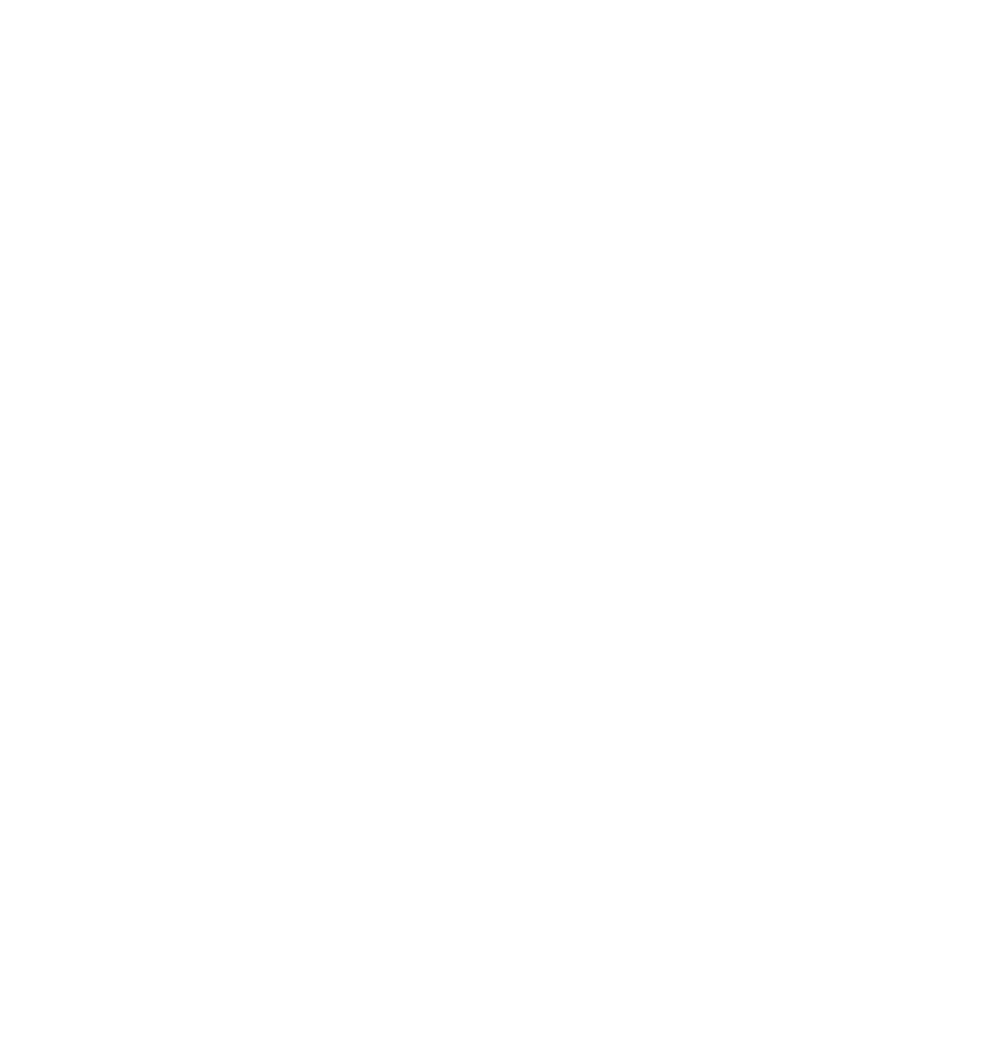 Fybra